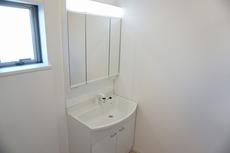 大きめの洗面ボウル、シャワー機能付きの水栓、収納スペースなどを備えた多機能型の洗面台。