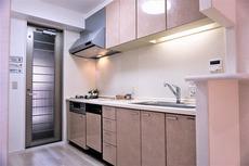 キッチン水栓・ビルトインコンロ・レンジフード交換済みです。食器洗浄機付きです^^