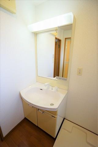 鏡の一部は収納にもなっているので、歯ブラシや洗顔などを隠して収納できる設計です。下の収納も大容量です。